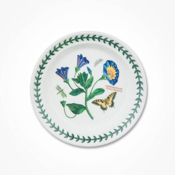 Botanic Garden 6 inch Plate Convolvulus