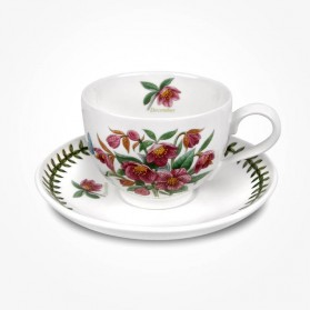 Portmeirion Flower of the Month December Teacup and Saucer Giftboxed