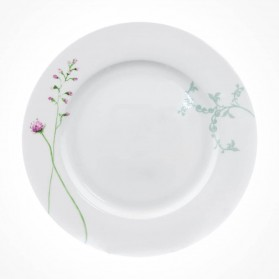 Aynsley Camille 4 X Dinner Plate set