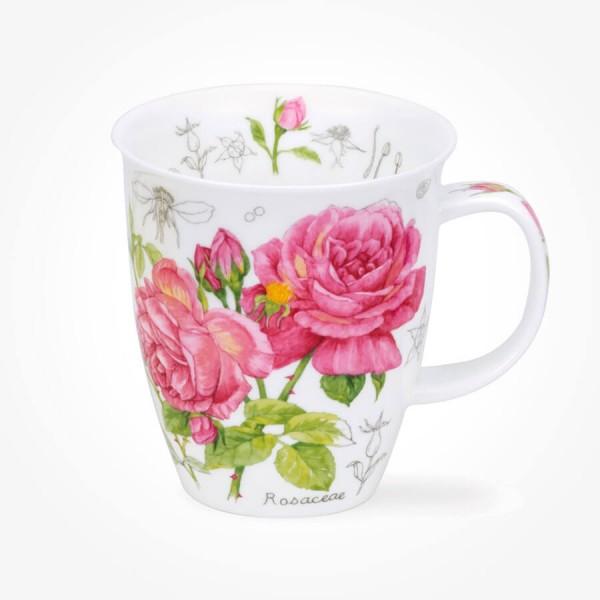 Dunoon Nevis Floral Sketch Rose mug
