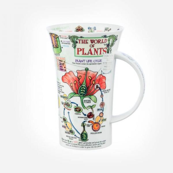 Dunoon Mugs Glencoe World of Plants