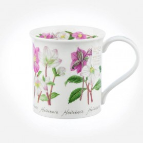 Dunoon Mugs Bute Winter Flowers Hellebore