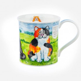 Dunoon Mugs Bute Comical Cats Tortoiseshell