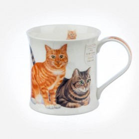 Dunoon Mugs Wessex Cats & Kittens Ginger
