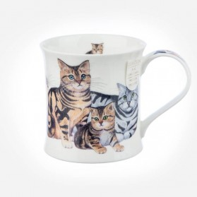 Cat Mugs Wessex Cats & Kittens Tabby