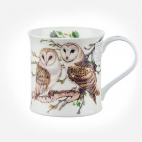 Dunoon Mugs Wessex BirdLife Collection Gift Box Owl