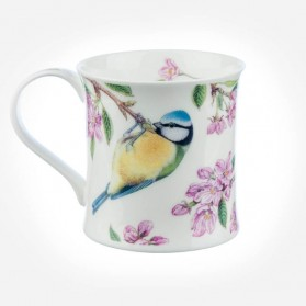 Dunoon Mugs Wessex BirdLife Collection Gift Box Blue Tit