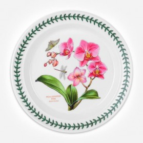 Exotic Botanic Garden 10 inch Plate Moth Orchid