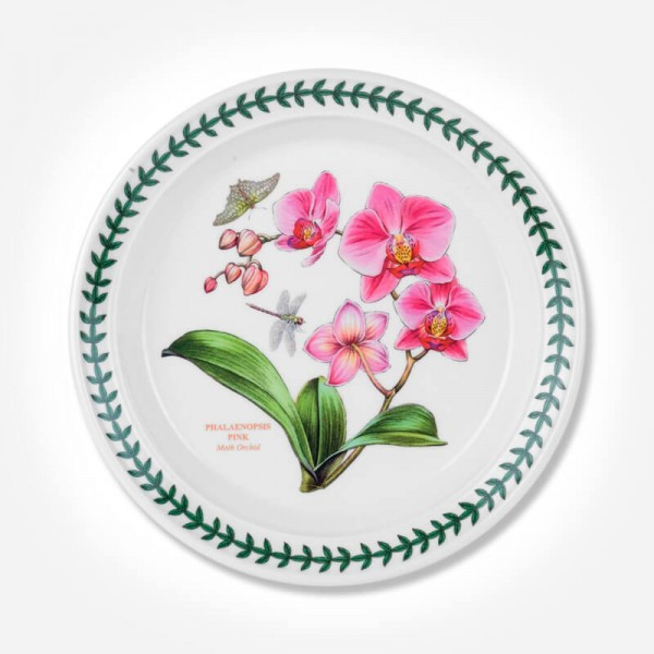 Exotic Botanic Garden 8 inch Plate Moth Orchid