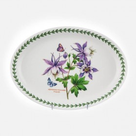 "Exotic Botanic Garden Oval Platter 11"" Dragonfly"