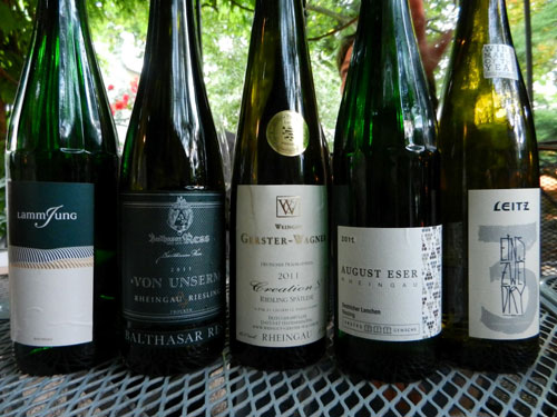 White wines from Rhein